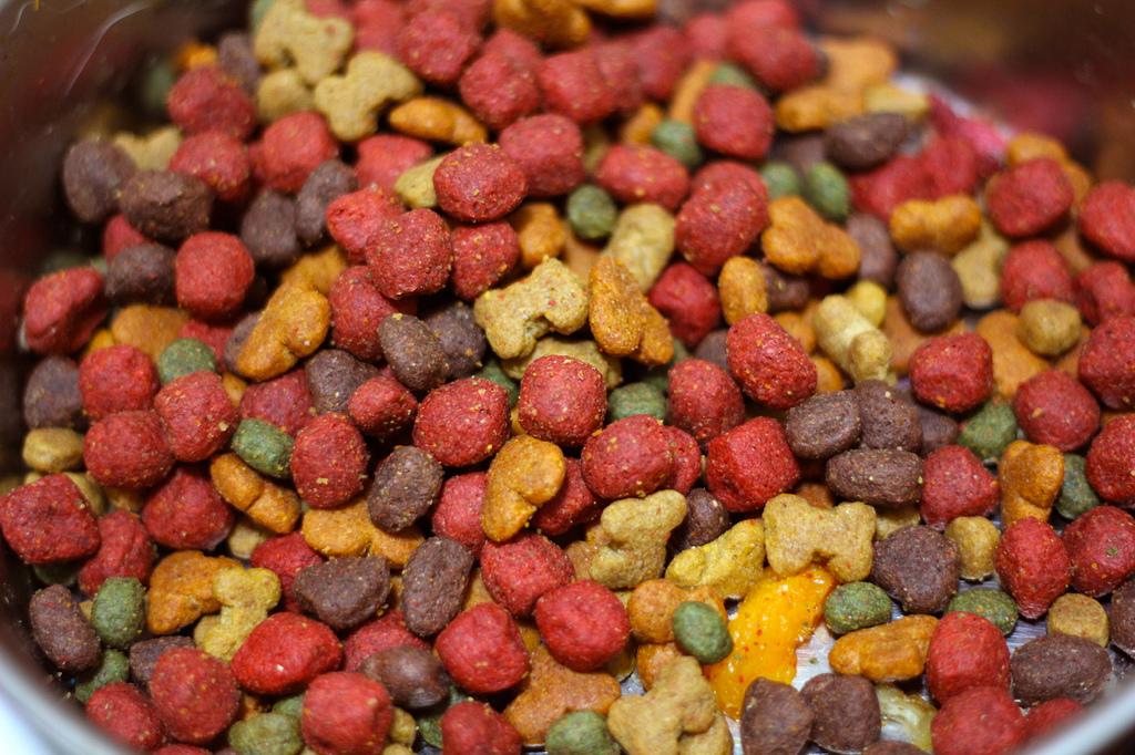 ¿Cómo elegir la comida para perros?